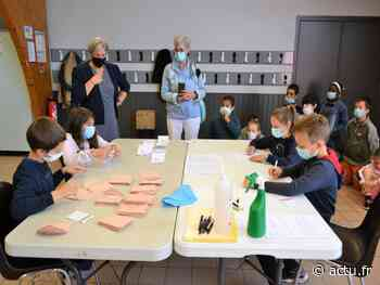 Conseil municipal des enfants : A Ancenis, les écoliers montrent la voie - actu.fr