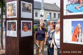 Fotografen van Fotoclub Zonhoven Centrum exposeren in Pelt - Het Belang van Limburg