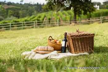 Bauernhofkonzerte mit Picknick im Dreisamtal - Regenbogen