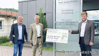 Das Ziel ist eine Rollstuhlfahrerschaukel - leinetal24.de