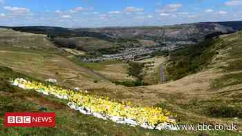 Covid: Three deaths in latest week in Wales