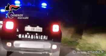 Operazione Geolja – arresti tra Gioia Tauro e Milano: dettagli e nomi - ZMedia