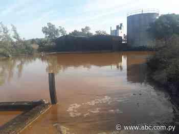 Denuncian que destilería de caña contamina arroyo en Quiindy - Nacionales - ABC Color
