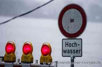 Pegel in Mannheim steigen - Hochwasserschutzmaßnahmen in Speyer und Germersheim eingeleitet - Mannheimer Morgen