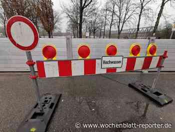 Rheinhochwasser im Kreis Germersheim* Update: Pegel am Rhein steigen weiter - Germersheim - Wochenblatt-Reporter