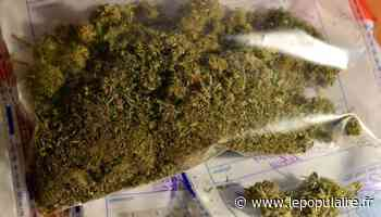 Trafic de stupéfiants démantelé à Saint-Junien - lepopulaire.fr