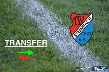 Markus Scholz komplettiert Torhütertrio des TSV Steinbach Haiger - FuPa - das Fußballportal