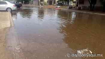 Drenaje de Huatabampo colapsa por lluvias recientes - Diario del Yaqui