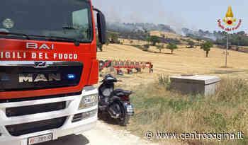 Pollenza, incendi in contrada Santa Lucia: in azione i vigili del fuoco - Centropagina
