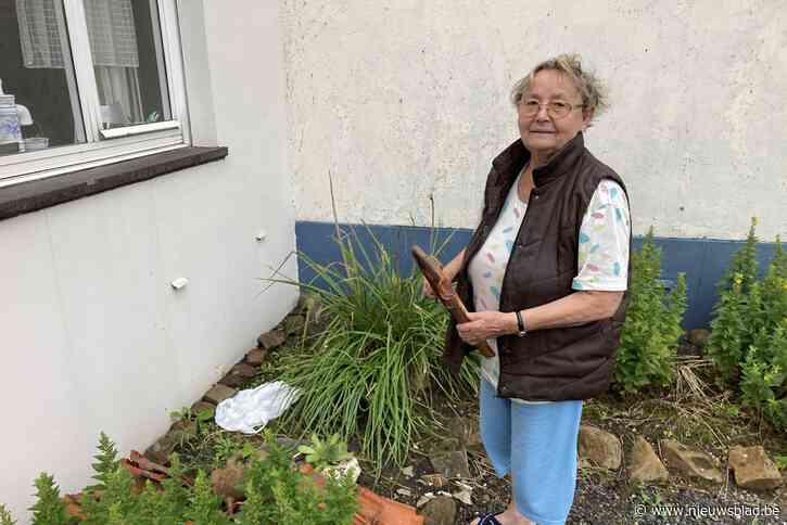 """Rosa (79) wordt in holst van de nacht uit bed gedaverd door landend vliegtuig: """"Zowel voor- als achteraan grote gaten in het dak door vallende dakpannen"""""""