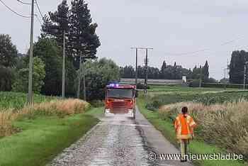 Brandweer ruimt oliespoor van 300 meter lang op