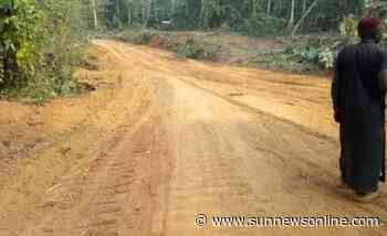 Accident prone Jigawa road to be redesigned, says perm sec - Daily Sun