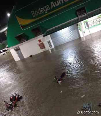 Lluvia en Jamay vuelve a arrastrar vehículos y provocar inundaciones - UDG TV