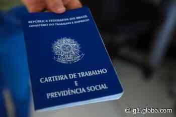 Balcão de Empregos oferece 219 vagas de trabalho em Presidente Prudente e região - G1
