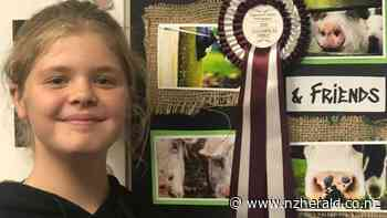 Photo board competition: Inglewood pupils capture perfect image - New Zealand Herald