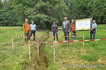 Erholung - Frischzellenkur mitten im Stadtwald - Frankenpost