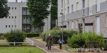 Au quartier du Parc, l'élagage de la « jungle urbaine » se poursuit - La Gazette en Yvelines