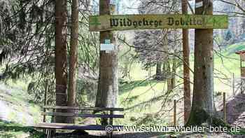 Hirschpfad in Bad Herrenalb - 2017 zugestimmt – doch noch nichts passiert - Schwarzwälder Bote