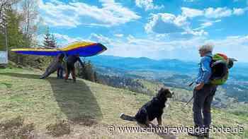 Aussichtsreiche Wanderung - Die Drachenflieger-Tour bei Bad Herrenalb - Schwarzwälder Bote