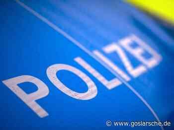 Im Graben gelandet: Lkw droht umzukippen - GZ live Seesen - Goslarsche Zeitung - Goslarsche Zeitung
