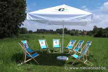 Gezellige picknick in de Mandelmeersen - Het Nieuwsblad