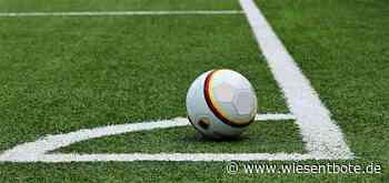 SpVgg Bayreuth zum Saisonauftakt beim TSV Rain - Der Neue Wiesentbote
