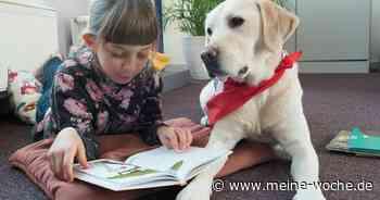 Lesehunde Johanniter für Grundschulen in Meerbusch - Meine Woche