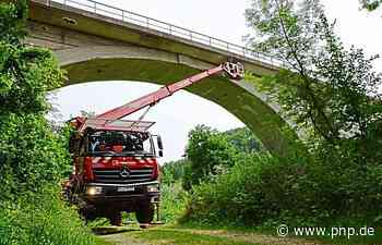 Umweltschutz beim Bahnausbau: Mit der Hebebühne auf Fledermaussuche - Passauer Neue Presse