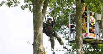Eerste parachutesprong ooit van 19-jarige Melle eindigt in boom - Hartvannederland.nl