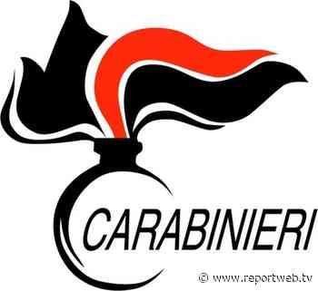 Ancora controlli dei Carabinieri nel comune di Arzano - Reportweb