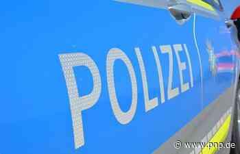Am Eggenfeldener Stadtpark Toilettentür aus Verankerung gerissen - Passauer Neue Presse