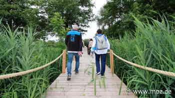 Landesgartenschau: Eckpunkte des Programms für die LAGA 2022 in Beelitz stehen fest - moz.de