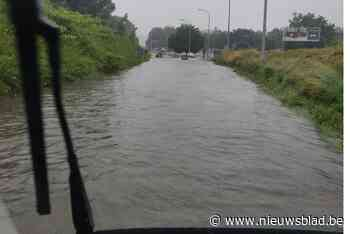 Brandweer in onze regio overstelpt met oproepen om wateroverlast te bestrijden