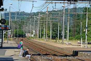 La mairie de Rive-de-Gier (Rhône) pousse un coup de gueule contre les suppressions ponctuelles des arrêts à la - France 3 Régions