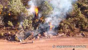 Com cerca de de 315 hectares queimados, Incêndio na Chapada dos Veadeiros é extinto - Sagres Online - Sagres Online