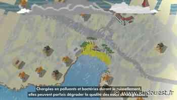 Saint-Palais-sur-Mer : une vidéo pour comprendre la qualité des eaux de baignade - Sud Ouest