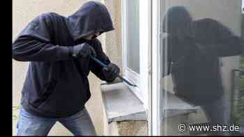 Schutz vor Wohnungseinbrüchen: Polizei Itzehoe erklärt: Diese Maßnahmen machen es Einbrechern schwer | shz.de - shz.de