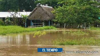 Arauca: inundados, afectados por el covid y sin luz - El Tiempo