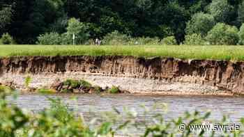 Wand mit 300 Uferschwalbennisthöhlen bei Binzwangen im Kreis Biberach abgebrochen - SWR