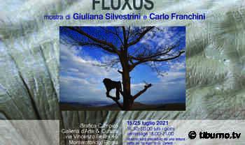 """Monterotondo, """"Fluxus"""" la mostra-evento tra uomo e natura - Tiburno.tv"""