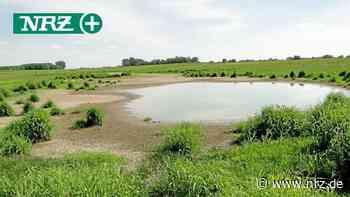 NRZ-Serie stellt Naturschutzgebiete in Emmerich und Rees vor - NRZ
