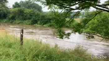 Scouts uit Kalmthout moeten kamp in Couvin vroeger afbreken - ATV