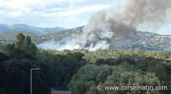 Porto-Vecchio : un incendie en cours dans le secteur du Géant Casino - Corse-Matin