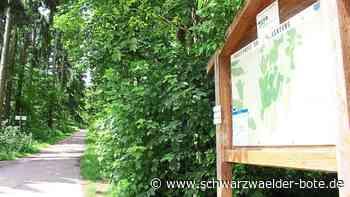 Bestattungen in Donaueschingen - Bald Friedwald am Schellenberg? - Schwarzwälder Bote