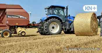 Erntezeit in Felm: So sind die Aussichten für Landwirt Andreas Templin - Kieler Nachrichten