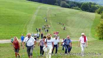 Stetten kompensiert Albstädter Landschaftsverbrauch - Stetten schafft Ausgleich für Albstadt - Schwarzwälder Bote