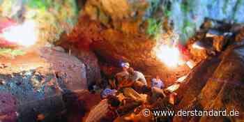 DNA aus Höhlenerde: 25.000 Jahre altes Erbgut einer Frau wiederhergestellt - DER STANDARD