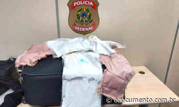 Polícia federal realiza apreensão de cocaína no Aeroporto Internacional dos Guararapes - O Documento
