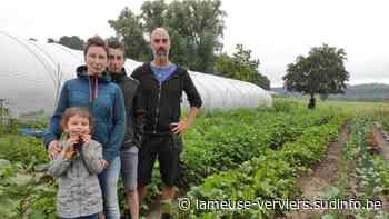 Vincent Lefèvre lance le domaine Thor'mate, un maraîchage ancestral à Goé - Sudinfo.be