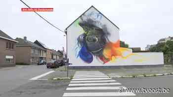 Street art van Viewmasters kleurt Sint-Gillis-bij-Dendermonde - TV Oost